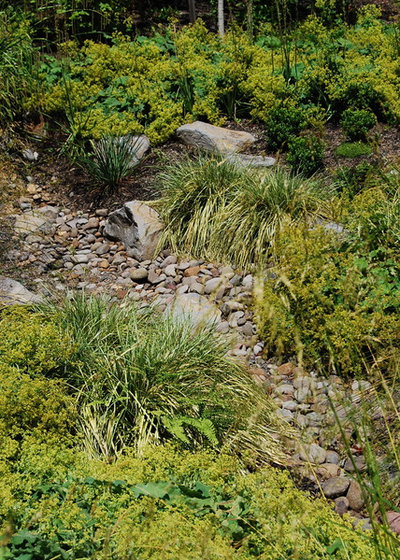 Contemporary Landscape by Samuel H. Williamson Associates