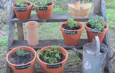 Étagère Herb Gardens Keep Flavor Within Reach