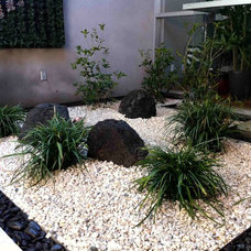 Contemporary Landscape by Urban Green