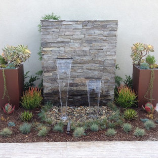 Design ideas for a contemporary garden in San Diego with a water feature.