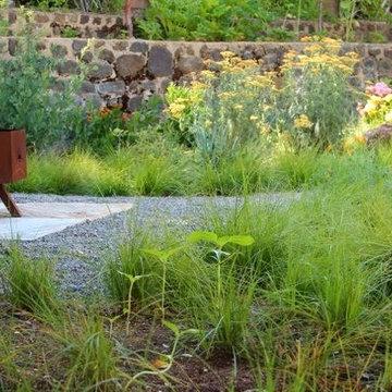 Demure Wabi Sabi Native Meadow