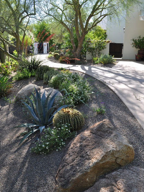 Phoenix front yard landscape ideas designs remodels photos for Landscape design phoenix