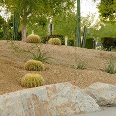 Contemporary Landscape by Jason Lee Design Studio, Inc.