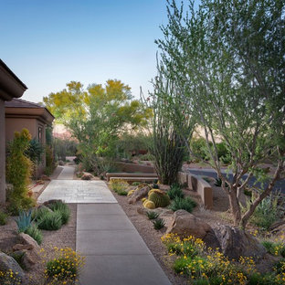Design ideas for a mid-sized southwestern drought-tolerant front yard gravel landscaping in Phoenix.
