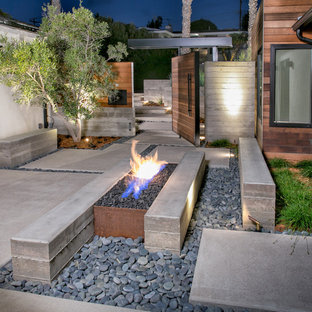 This is an example of a mid-sized modern drought-tolerant and full sun courtyard landscaping in San Diego with a fireplace.