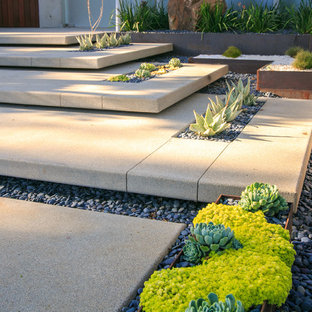 This is an example of a large modern drought-tolerant and partial sun backyard concrete paver garden path in San Diego.
