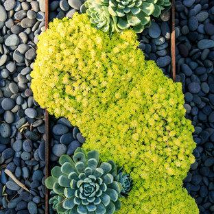 Diseño de jardín de secano, moderno, grande, en patio trasero, con jardín de macetas, exposición parcial al sol y adoquines de hormigón