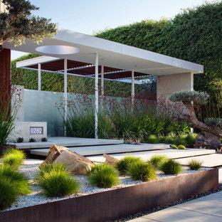 Jardin contemporain de luxe : Photos et idées déco de jardins