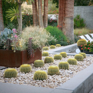 This is an example of a large midcentury modern drought-tolerant and full sun backyard gravel landscaping in San Diego.