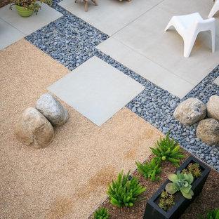 Kleiner, Halbschattiger Moderner Garten hinter dem Haus in San Diego