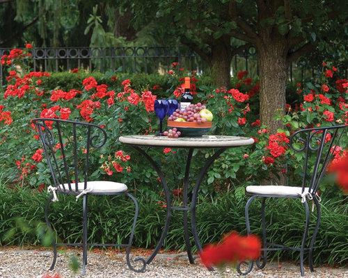 Flowering Shrubs - Seasons Garden Center