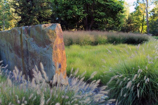 Eclectic Landscape by AHBL