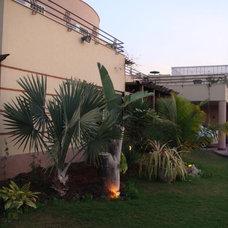Tropical Landscape by Treeline Designz