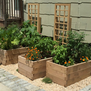 75 Beautiful Driveway Garden with a Vegetable Patch Ideas ...
