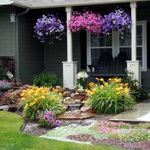 Favorite Front Yard Ideas