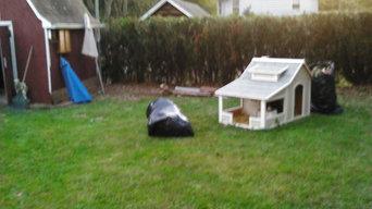 Dog House environment