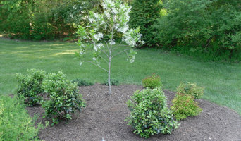 Dogwood was replaced with a native Fringe tree.