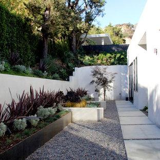 Modelo de jardín contemporáneo, en ladera, con jardín de macetas y gravilla