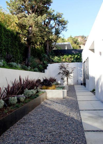 Contemporary Landscape by Foundation Landscape Design