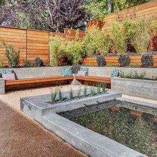 Jardin moderne avec un bassin : Photos et idées déco de jardins