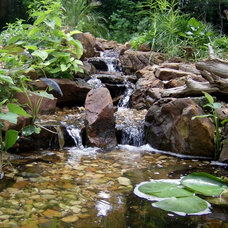 Tropical Landscape by Texas Ponds and Water Features, LLC