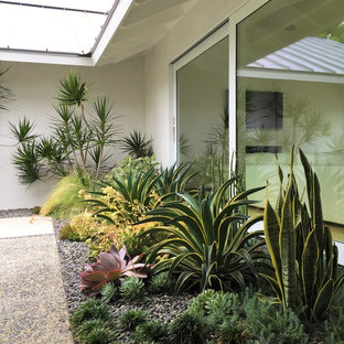Inspiration for a mid-sized midcentury garden in Orange County.