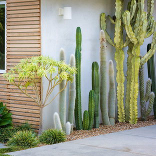 This is an example of a mid-century modern landscaping in Orange County.