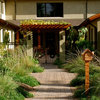 See 5 Native Alternatives to Feather Grass and Fountain Grass