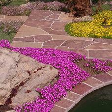Eclectic Landscape by MARPA DESIGN STUDIO
