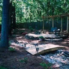 Eclectic Landscape by Jane Waldrop