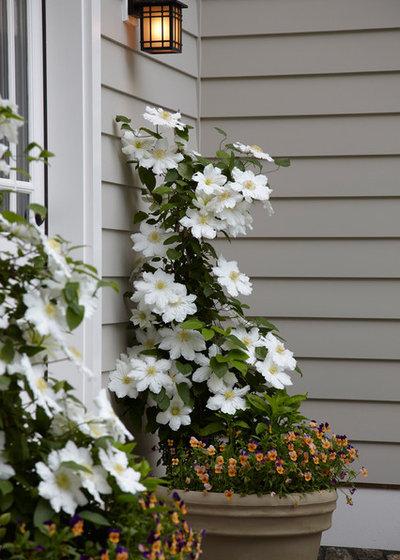Eclectic Garden by Westover Landscape Design