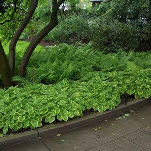 На фото: тенистый, весенний участок и сад среднего размера на переднем дворе в классическом стиле с подъездной дорогой с