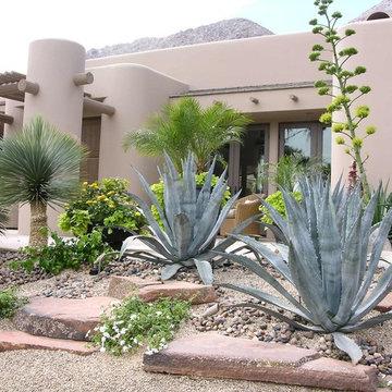 Driveway, Entry Steps, Deck and Landscape Remodel