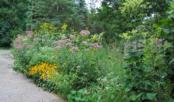 Driveway Runoff Rain Garden