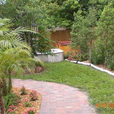 Tropical Landscape Drought resistant garden