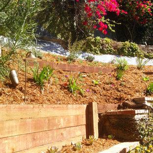 Medelhavsstil inredning av en mellanstor trädgård i delvis sol som tål torka och i slänt, med en trädgårdsgång och marksten i tegel