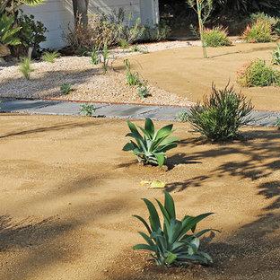 Drought Tolerant Landscape--Front Yard