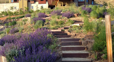 Landscape architects landscape designers south lake for Lake tahoe architecture firms