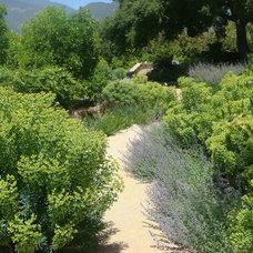 Mediterranean Landscape by Green Goddess Gardens, Inc.