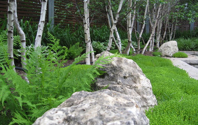 For Garden Drama, Consider the Lowly Boulder