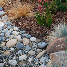Asian Landscape by Verdance Landscape Design