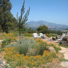 Eclectic Landscape by Golden Associates, Landscape Architects