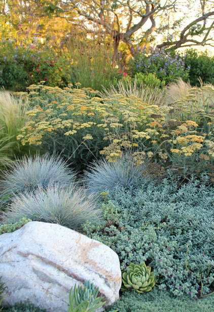 Learn your garden 39 s microclimates for a resilient landscape for Landscape design using ornamental grasses