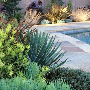 Idéer för funkis trädgårdar, med naturstensplattor