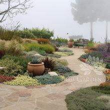 Santa Barbara/ Coastal Landscaping