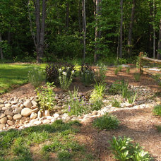 Eclectic Landscape by Earth Design, Inc.