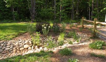 Dry Streams, Rain Gardens and Bog Gardens