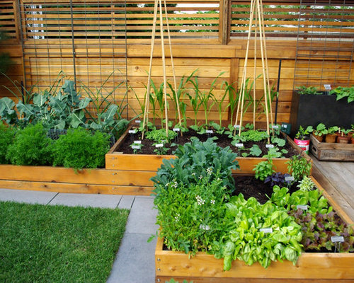 Raised Garden Bed Ideas | Houzz