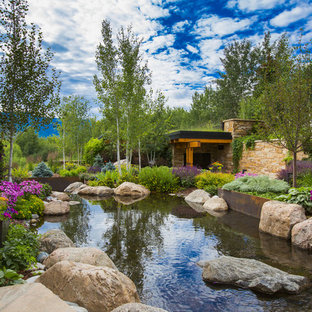 This is an example of a contemporary full sun side yard pond in Denver.