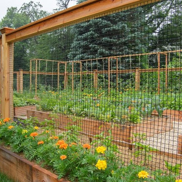 Eat Better With a Homefront Garden